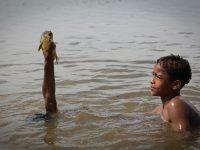 Ouarzazate Fishers